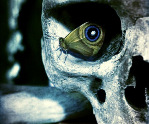 butterfly, skull, and life vs death image