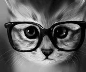 adorable, cat, and nerd image