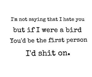hate, bird, and quote image