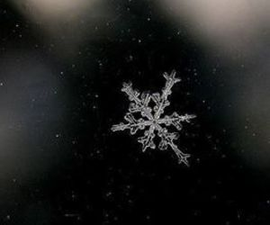 snow, winter, and snowflake image