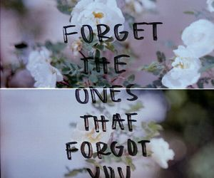 forget, quotes, and flowers image