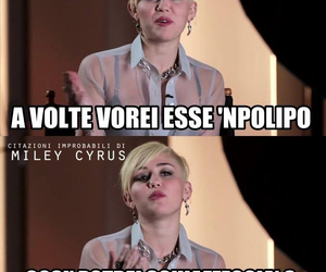 laugh, lol, and miley image