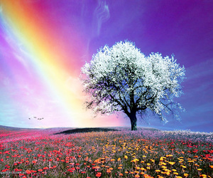 awesome, colourful, and life image