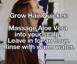 hair, aloe vera, and tips image