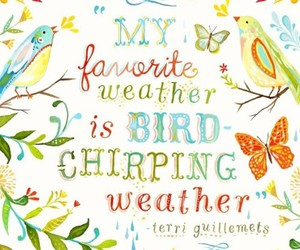 bird, quotes, and spring image