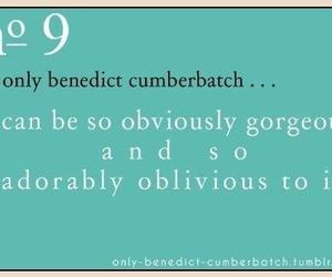 adorable, benedict, and nine image