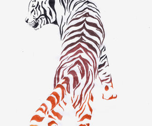 design, tiger, and tattoo image