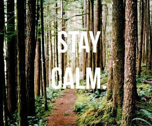 stay calm image