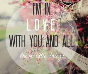 quote, little things, and one direction image
