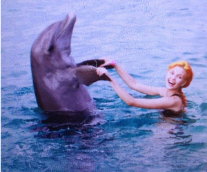 dolphin, girl, and vintage image
