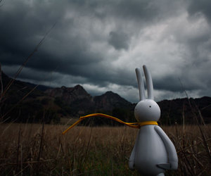 bunny, clouds, and toys image