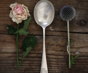 spoon, rose, and flowers image