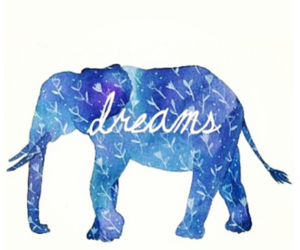 dreams, elephant, and quote image