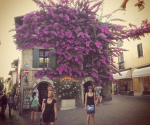 flowers, house, and italie image