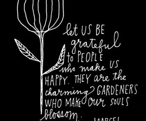 quote, grateful, and happy image