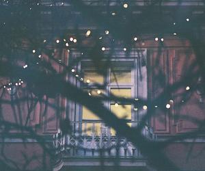 light, window, and tree image