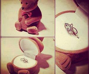 bear, ring, and teddy bear image