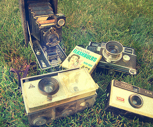 camera, grass, and old image