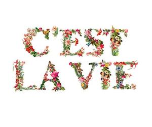 flowers, life, and c'est la vie image