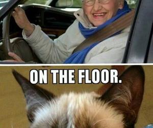 funny, grumpy cat, and life alert image