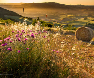 country, sunlight, and hay bales image