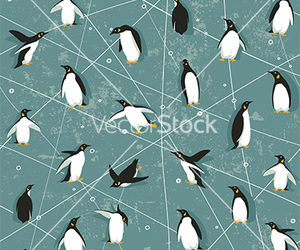 penguin and background image