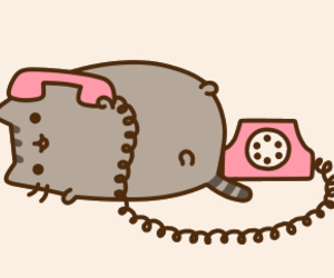 pusheen, cat, and phone image