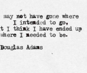 quotes, life, and douglas adams image