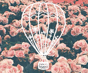 flowers, hot air balloon, and pink image