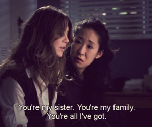 family, sisters, and grey's anatomy image