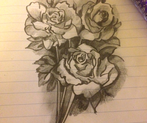 art, drawings, and roses image