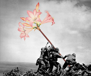 war, flowers, and black and white image