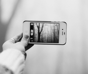 iphone, photography, and forest image
