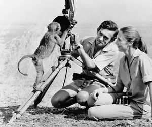 camera, jane goodall, and love image