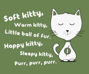 the big bang theory, kitty, and funny image