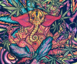 weed, elephant, and drugs image