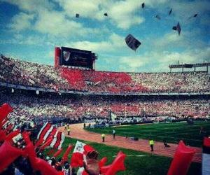 river plate and carp image