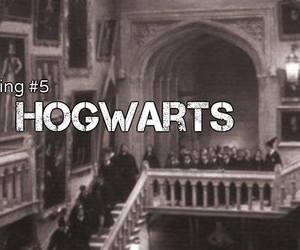 harry potter, missing, and hogwarts image