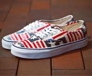 usa and vans image