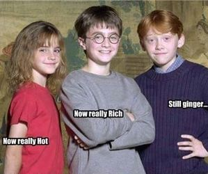harry potter, ginger, and rich image