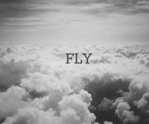 alone, black and white, and fly image