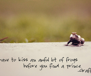 frog and love image