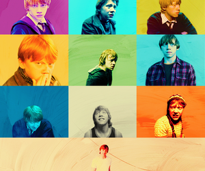 harry potter, hp, and ron weasley image