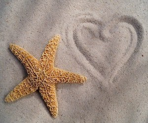 sand, beach, and heart image