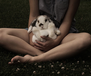 bunny, girl, and cute image