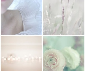 flowers, romantic, and white image