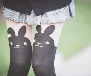 fashion, legs, and bunny image