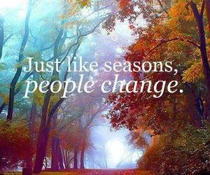 quote, words, and seasons image