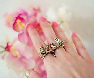 ring, owl, and nails image