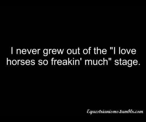 horse and horse quotes image